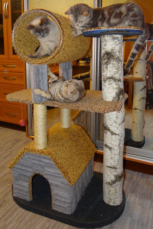 Точилка для когтей для кошки