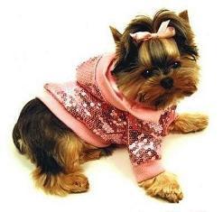 Одежда для собак для любой погоды